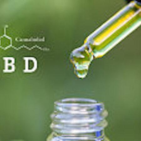 CBD Olja användning